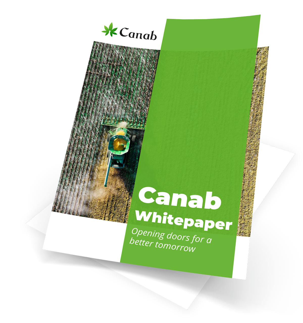 canab-whitepaper-download 2